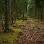 La Lozère: des paysages à couper le souffle
